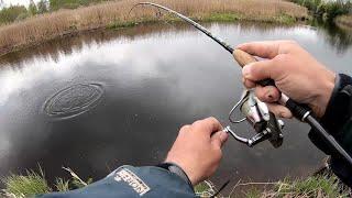 Рыбалка с берега. Рыбалка на щуку.  Ловля щуки на озере.  Спиннинг 2020.  Рыбалка 2020.