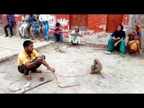 Download Madhari  ka  khel
