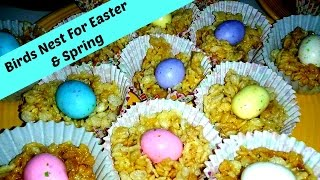 Bird Nests For Easter and Spring
