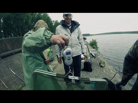 прогноз рыбалки на 5 дней димитровград