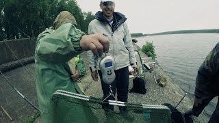Змагання з ловлі Поплавковою '' Десногорск, риболовля,2015''