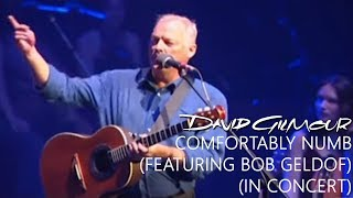 David Gilmour - Comfortably Numb (Reprise) (In Concert)