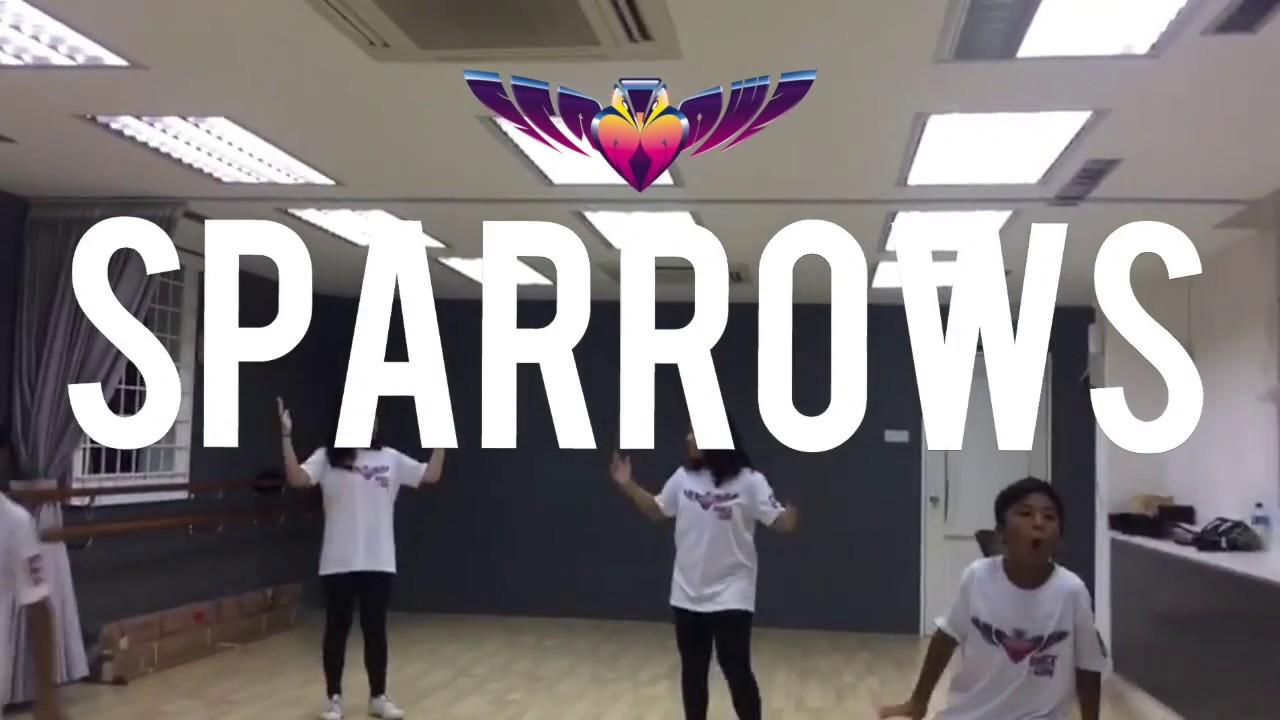 SPARROWS DANCE GYM #01...
