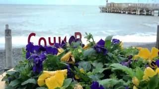 видео Сочи весной