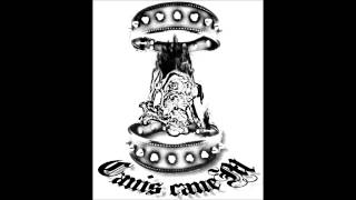 Canis Canem - Pensieri, Parole, Opere e.... Missioni!!