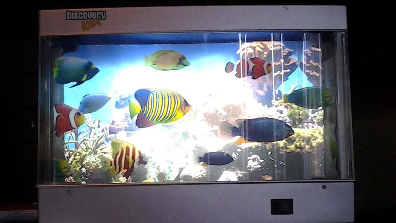 bedroom fish tank fish tank lamp in my bedroom hd 10433