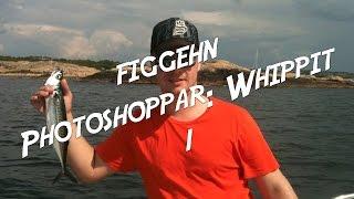 figgehn Photoshoppar whippit #1