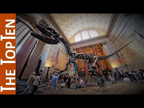 The Top Ten Best Dinosaur Museums