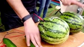 Сюжет ТСН24: На открытие катка на «Октаве» сыграют на овощах