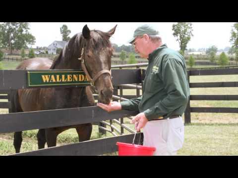 Kentucky Agritourism - Kentucky Farms are Fun