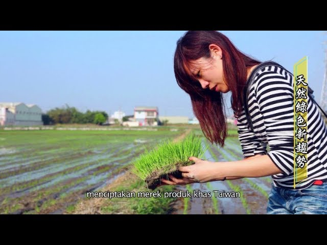 「臺灣美粧前進東南亞」系列報導(三):【天然綠色新趨勢】
