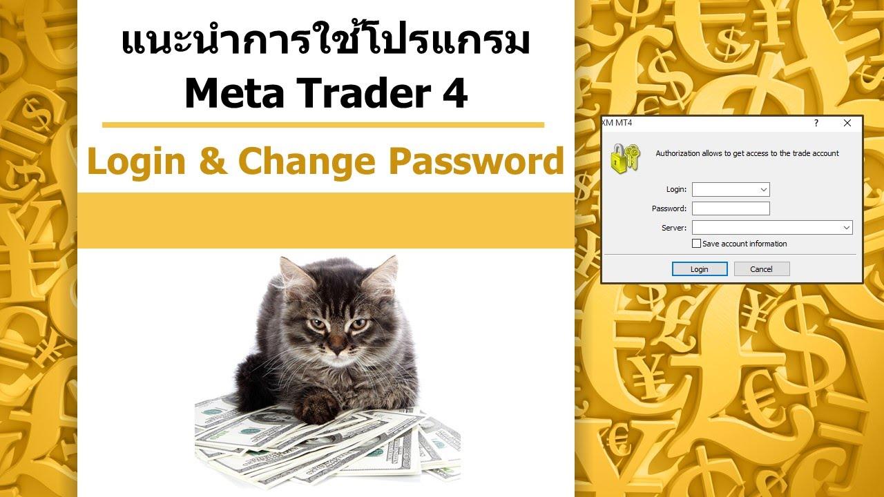 Arizona porn password trader