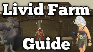 Livid Farm Guide: Fastest Produce Points per Hour [Runescape 2015]