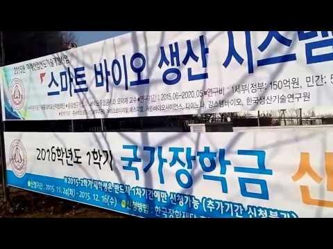 Sejong University Virtual Tour