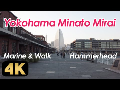 Walking around Yokohama Minato Mirai. Tour the Hammerhead, Marine & Walk, etc.