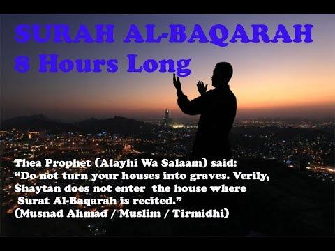 Surah Al Baqarah - 8 Hours Long | Holy Qu'ran