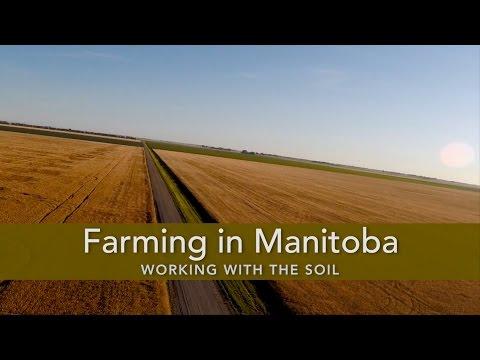 Farming in Manitoba