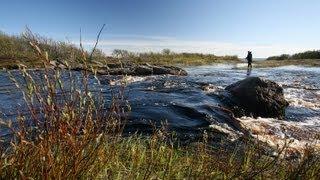 К заповедным рекам Терского берега на вездеходе-1.