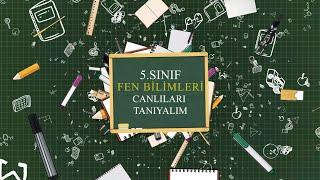 5. SINIF FEN BİLİMLERİ CANLILARI TANIYALIM
