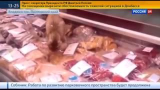 За кота-обжору ответит аэропорт Владивостока