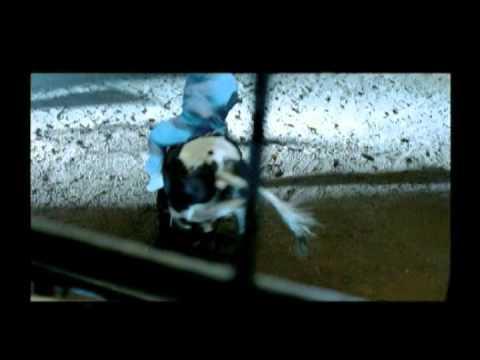 CLEAN COAL - RODEO TV AD 2010
