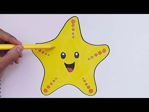Como Dibujar Y Pinar A Estrella De Mar How To Draw And Pine