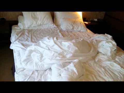 NH Hotel De La Gare in Bologna room review