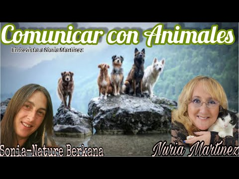 Biodescodificación Transgeneracional - Heredero Universal from YouTube · Duration:  2 minutes 4 seconds
