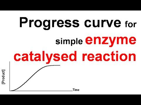 Progress curve of simple enzyme catalyzed reaction