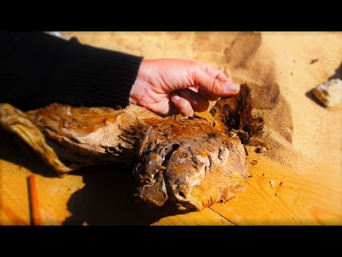 9 STRANGE Discoveries from Ancient Egypt