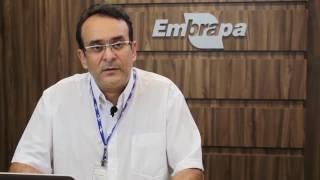 Marco Nogueira - Os insumos biológicos podem dar suporte a altas produtividades?