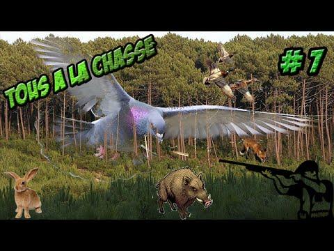 TOUS A LA CHASSE| AU TOUR DES PIGEONS |chasse simulator