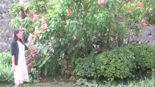 Download Maria Makiling Videos - Dcyoutube