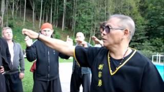 Repeat youtube video Kung Fu Seminar with Sifu Lau Kar Yung - Molveno 2014