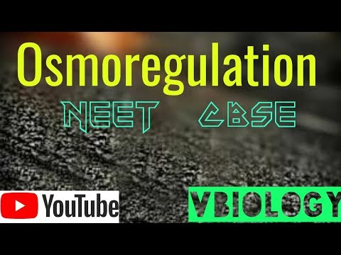 Osmoregulation || XI BIOLOGY || CBSE , NEET || Vinay Biology