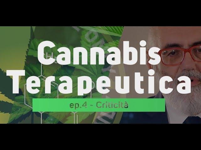 Cannabis Terapeutica - Dr Marco Bertolotto ep.04 Criticità