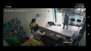 A stray / street dog asks for help at a veterinary clinic for an injured paw.