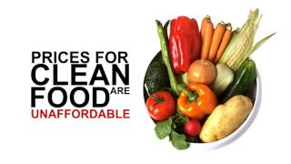 Sell Organic Foods Online | Business Opportunities | Health Merchant