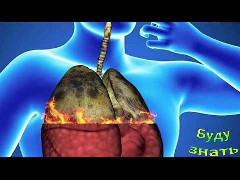 Как Очистить организм от НИКОТИНА, если бросил курить