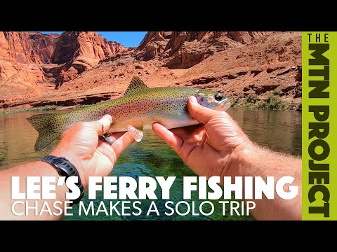 Rainbow Trout Fishing At Lee's Ferry