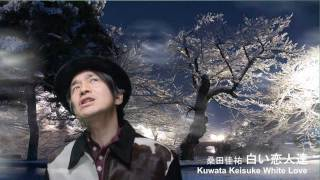 白い恋人達/桑田佳祐 (Kuwata Keisuke White Love)
