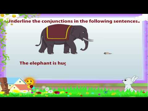 Learn Grade 3 - English Grammar - Conjunctions