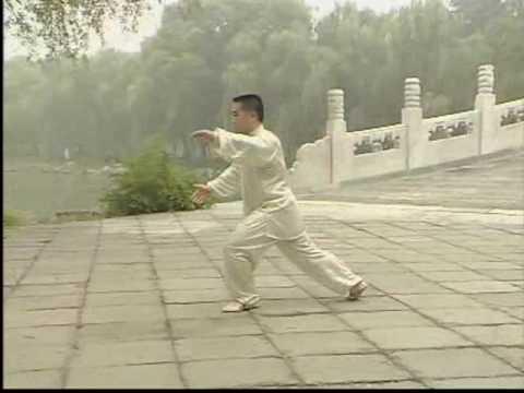 TaiJiQuan - Thái Cực Quyền 10