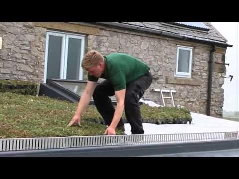 How to Install GrufeKit Sedum Green Roofs - It