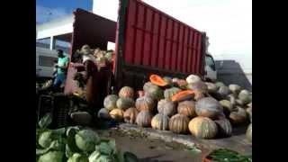سوق الجملة للخضر والفواكه طنجة 21 ذو القعدة 1435 لـ 17-09- 2014 مقطع 2