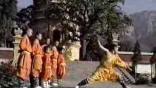 Repeat youtube video Shaolin Taizu Changquan