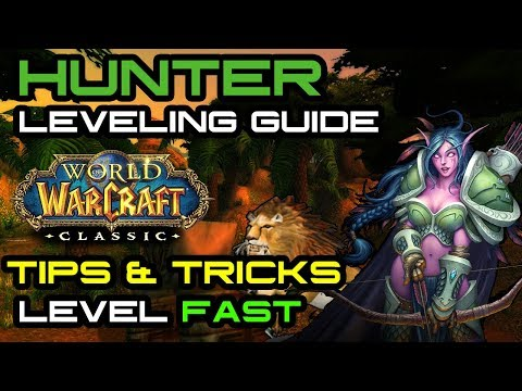 Hunter Leveling Guide Tips Tricks For Leveling A Hunter In Vanilla Youtube