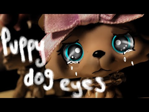 Lps mv: Puppy dog eyes