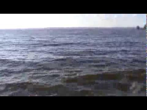 Ловля сома.Волга, Ульяновск - YouTube