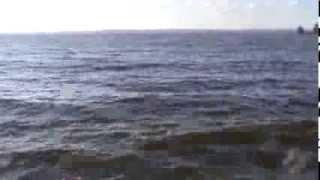 Ловля сома на перемёт.Волга,Ульяновск(Ловля сома на перемет., 2013-03-07T16:51:28.000Z)